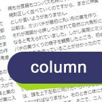 CSSで長い文章を段組みで見せるcolumnプロパティの使い方